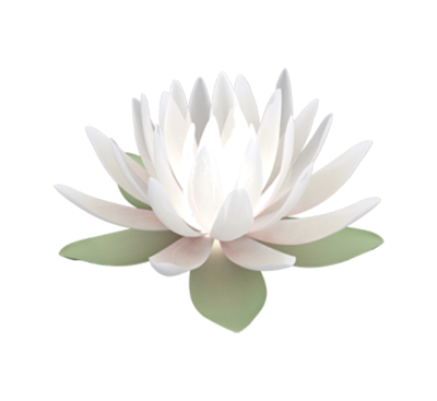 lotus_flower_mini